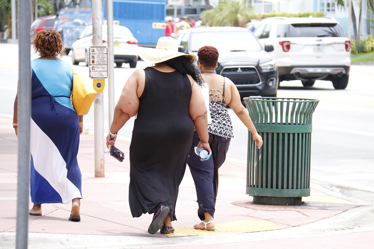Overweight Group