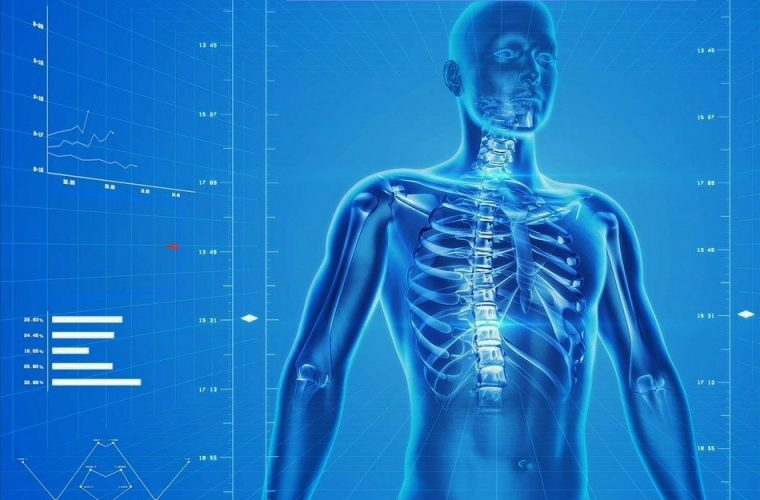 Human Skeleton - Benefits of Orthopedic Surgery